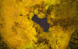 Pahalampi (pond)